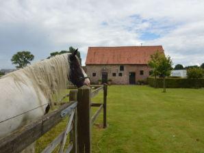 Bauernhof De Peirdestal