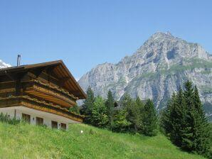 Ferienwohnung Grindelwald 16
