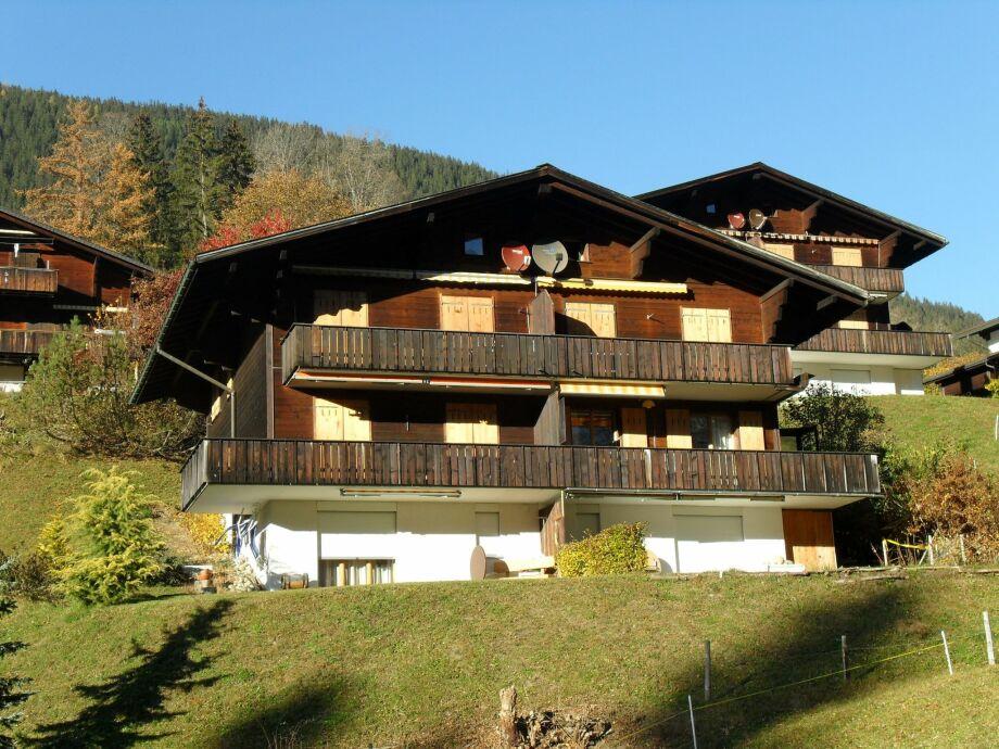 Außenaufnahme Grindelwald 32