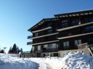 Chalet Le Grizzly
