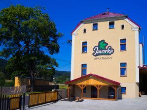 Ferienhaus Javorka