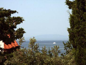 Ferienwohnung Villa Biserka