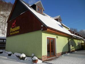 Ferienhaus Alte Spielzeugfabrik