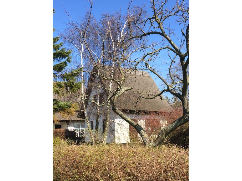 Reetgedecktes Ferienhaus an der Ostsee