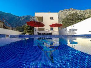 Villa BVMaros