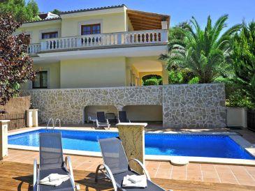 Ferienhaus mit Pool 4x11m - ID 2342