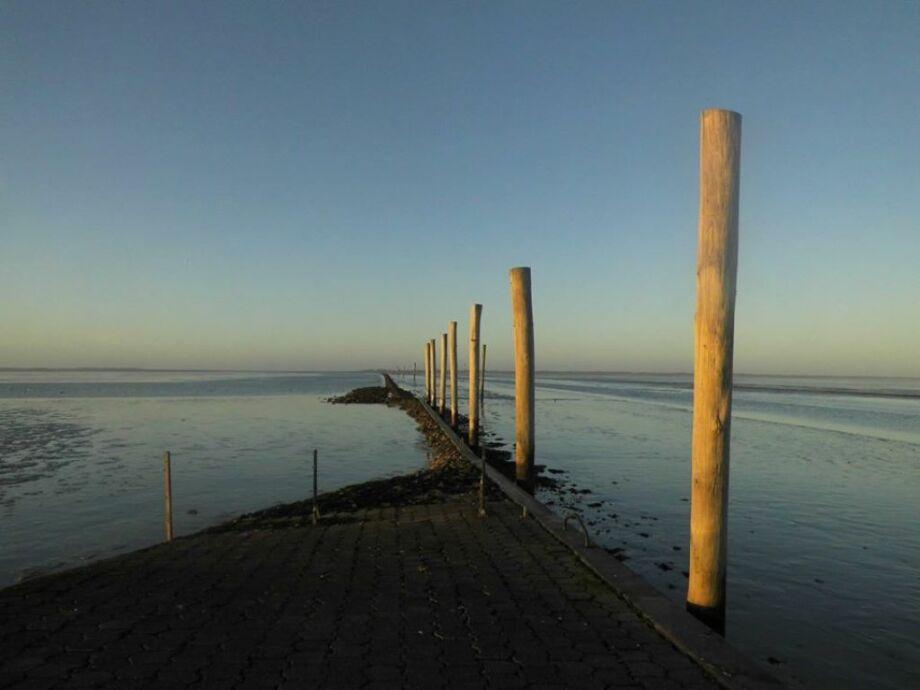 Weltnatuerbe Wattenmeer