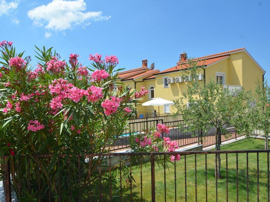 gepflegter mediteraner Garten
