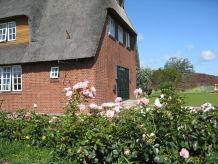 Holiday house summer cottage Süderhörn List