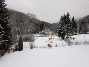 Ferienwohnung Mühlenkopfblick