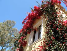 Ferienwohnung Borgo degli Ulivi 4