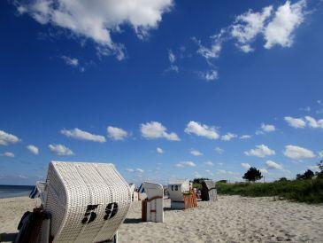Ferienwohnung direkt am Ostseestrand