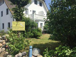 Ferienhaus Sturmmöwe