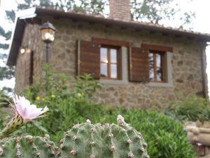 Cottage Il Poggiolino