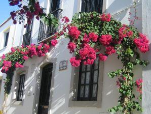 Ferienhaus Laluleva
