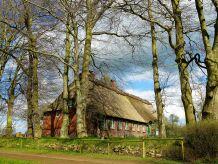 Landhaus Romantisches Reetdachhaus