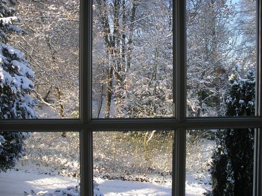Ein Winterblick aus Ihrem Fenster
