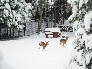 Ferienwohnung Erholung am Wald
