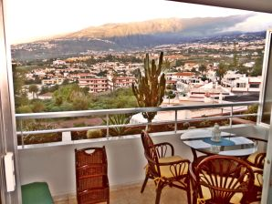 Holiday apartment La Orotava