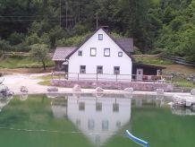 Ferienhaus Daxenwinkel