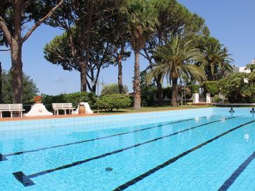 Ferienhaus mit Pool : 100% Relax & Ruhe