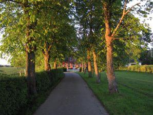Ferienhaus Landhuus