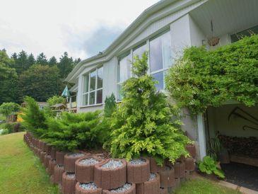 Ferienhaus Schloßblick