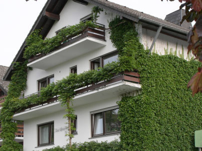im Appartementhaus Wiesental