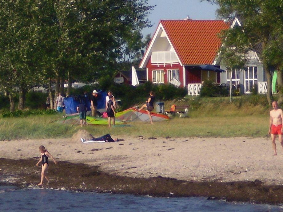 ferienhaus direkt am strand der ostsee ostsee schleswig. Black Bedroom Furniture Sets. Home Design Ideas