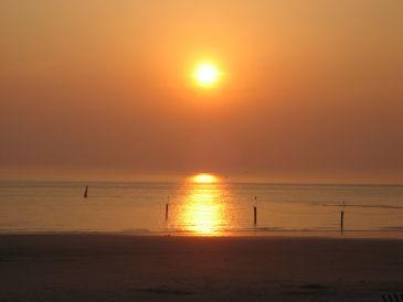 Ferienwohnung Strandmuschel