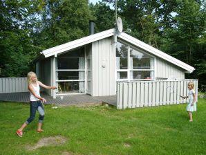 Ferienhaus Dronningmølle, Haus-Nr: 27180