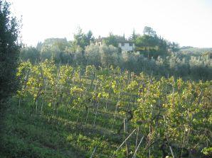 Ferienwohnung Landhaus Chianti