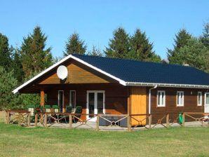 Ferienhaus Ans, Haus-Nr: 36103