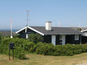 Ferienhaus Faaborg, Haus-Nr: 10201