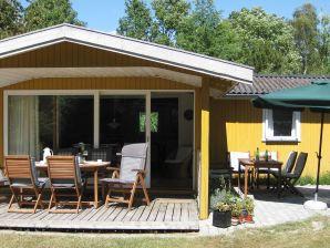 Ferienhaus Dannemare, Haus-Nr: 23700