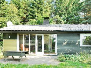 Ferienhaus Bording, Haus-Nr: 16964