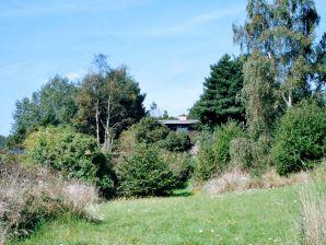Ferienhaus Rudkøbing, Haus-Nr: 26073