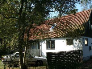 Ferienhaus Nexø, Haus-Nr: 11645