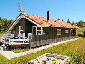 Ferienhaus Silkeborg, Haus-Nr: 16850