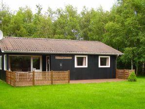 Ferienhaus Dannemare, Haus-Nr: 27387