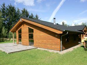 Ferienhaus Fjerritslev, Haus-Nr: 28424