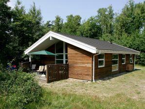 Ferienhaus Hasle, Haus-Nr: 13787