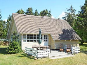 Ferienhaus Blåvand, Haus-Nr: 10443