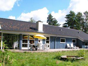 Ferienhaus Aakirkeby, Haus-Nr: 25036