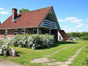 Ferienhaus Hesselager, Haus-Nr: 42751