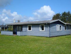 Ferienhaus Vinderup Kommune, Haus-Nr: 13221