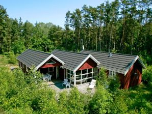 Ferienhaus Aakirkeby, Haus-Nr: 24373