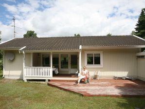 Ferienhaus Rødby, Haus-Nr: 39759