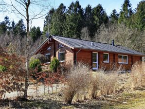 Ferienhaus Silkeborg, Haus-Nr: 17211