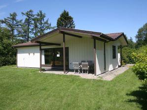 Ferienhaus Faxe Ladeplads, Haus-Nr: 33179